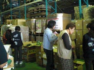 201106 倉庫保管の宮崎野菜.jpg